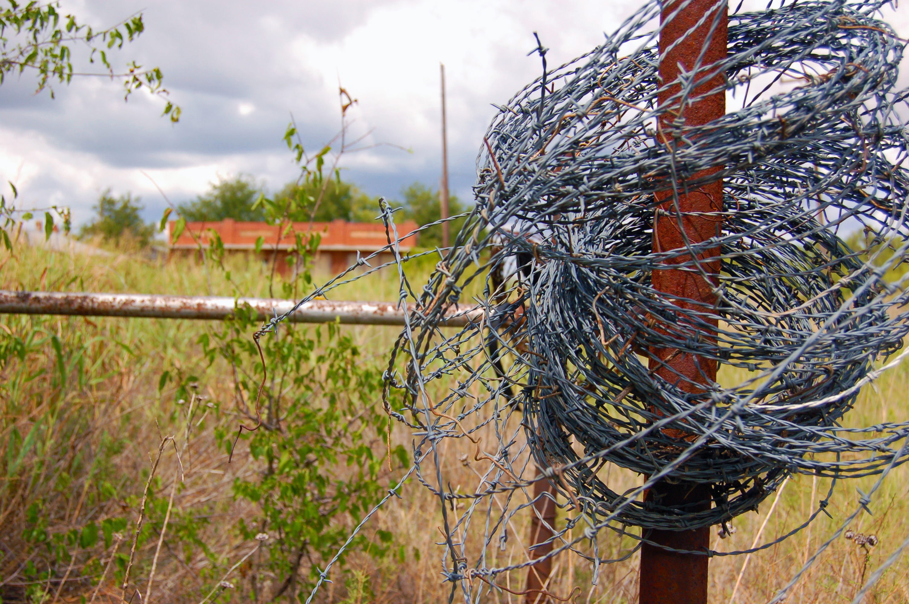 unfinished fences dundee